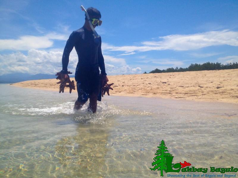 honda-bay-starfish-island-2