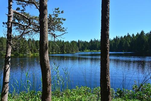 nature eau jura sentier étang balade gruère