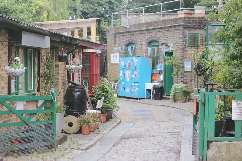hackney city farm 3