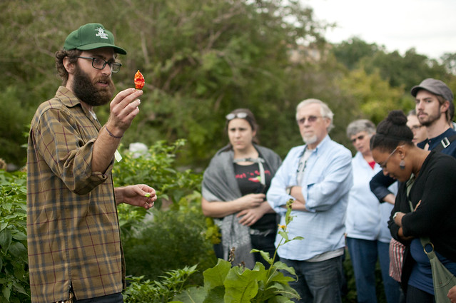 A tour of BBG's chile peppers. Photo by Michael Ratliff.