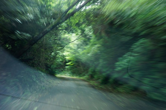 ROOTS! 自分探しの旅第5章 僕の夏休み2 林道を行く