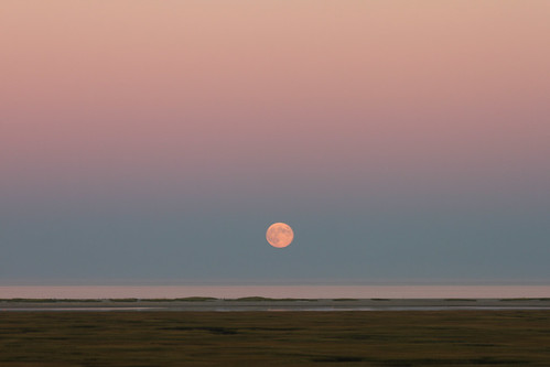 Harvest Moon - Fort Hill, Eastham - Explore 9/22/2013 by Whale24