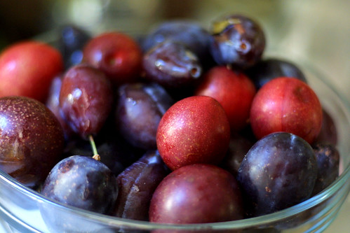 More plums in a bowl