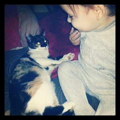 ♥ Bonjour instagram ♥ #ikea #baby #cat #chat #ourlittlefamily #france #blog #blogueuse