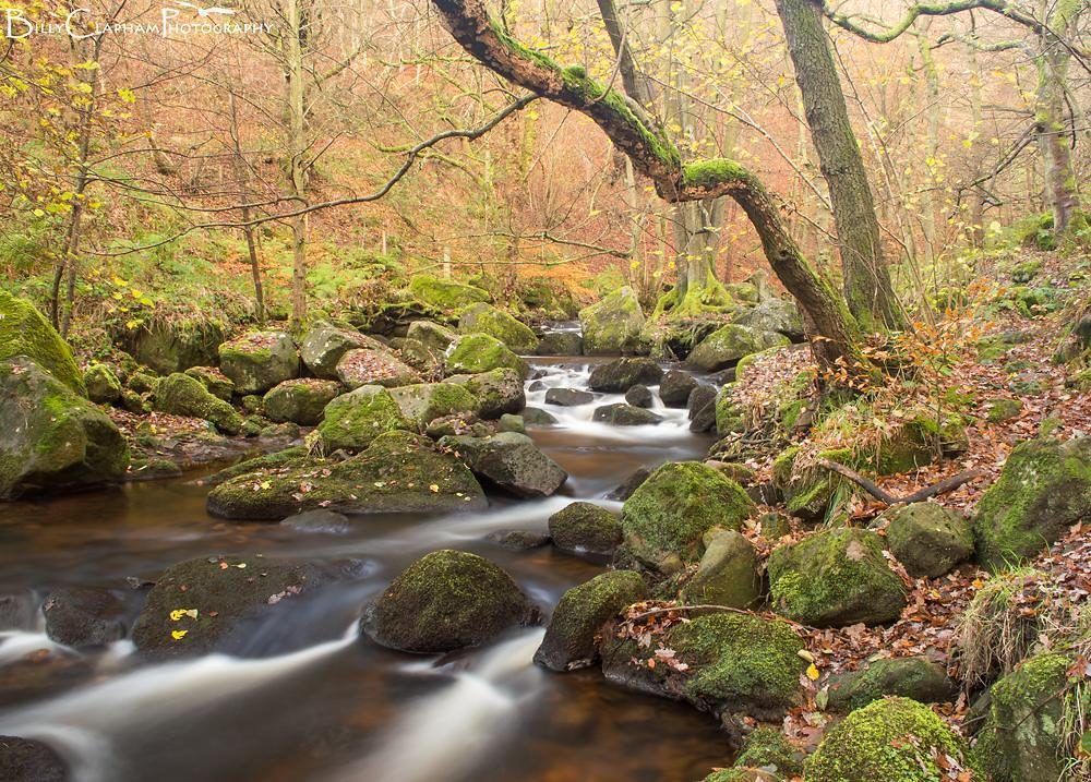 Billy clapham peak district Padley Gorge Landscape river