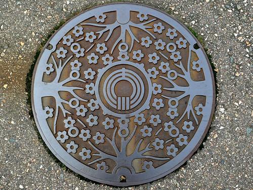 Shogawa Toyama, manhole cover (富山県庄川町のマンホール)