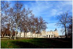 Aranjuez 8 de enero de 2014, de paseo