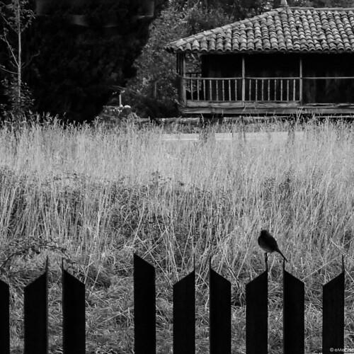 en el límite by eMecHe