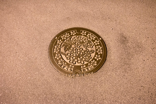 2014 マンホール 四国 夜 宿毛市 旅行 高知県 日本 japan travel kochi nikond600 night zf2 distagont225 manholecover carlzeiss