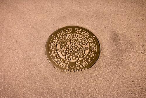2014 マンホール 四国 夜 宿毛市 旅行 高知県 日本 japan travel kochi nikond600 night zf2 distagont225 manholecover carlzeiss
