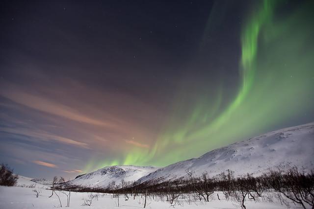 Tromso - Aurore Boréale