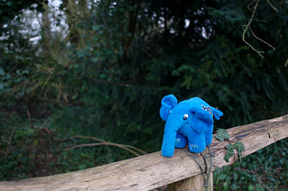 Elephpant was happy too