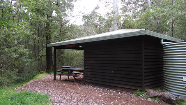Day 31: Beedelup Shelter