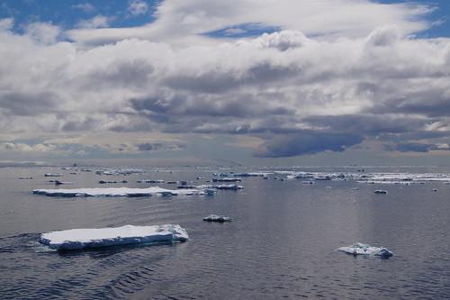 597 Weddell Sea