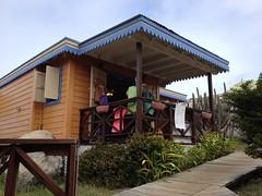 Bad Kitty Catamaran Tour, Virgin Islands