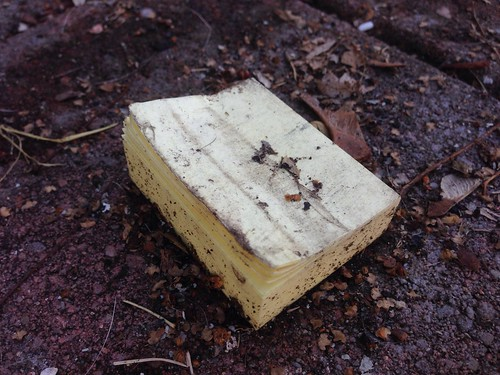 Found in the Melting Snow: Soggy Post-It Notes