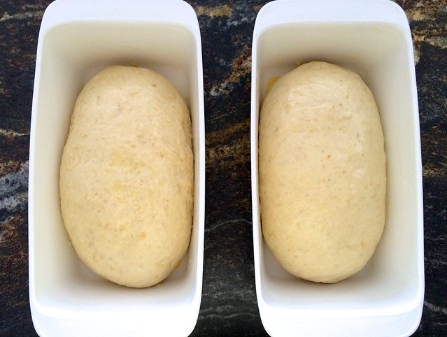 Shaped Loaves in Bread Pans