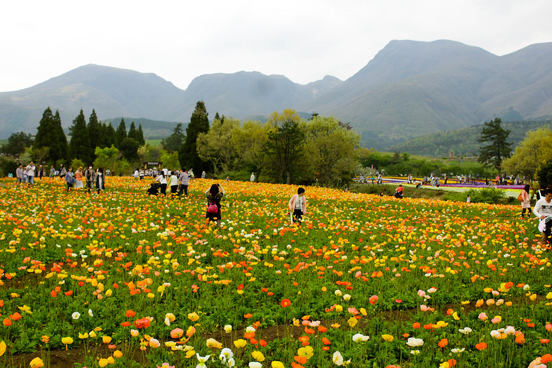 2014-05-04_01055_九州登山旅行.jpg