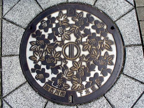 Kakogawa Hyogo, manhole cover (兵庫県加古川市のマンホール)