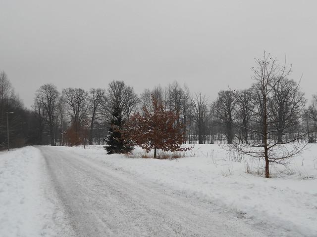 Luminen maisema Espoon Leppävaaran luoteiskulmalla 4.2.2015