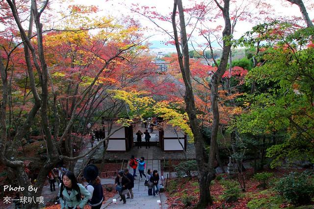 嵐山旅遊景點-常寂光寺15