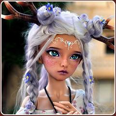 Phoenix of CeithiArielr...