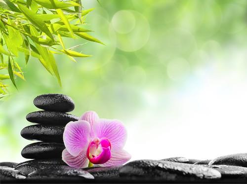 zen stones_shutterstock_74093341
