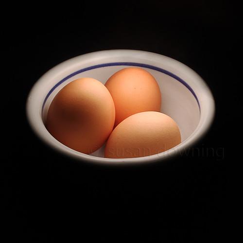Eggs 262/365