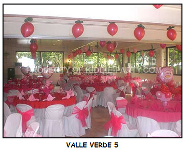 Valle Verde 5 by Kiddie Party