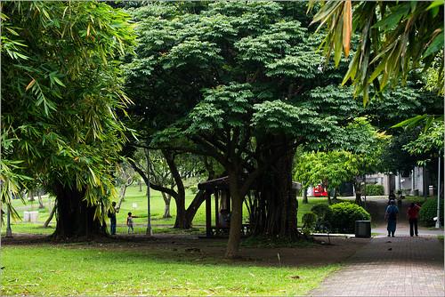 大安森林公園0644