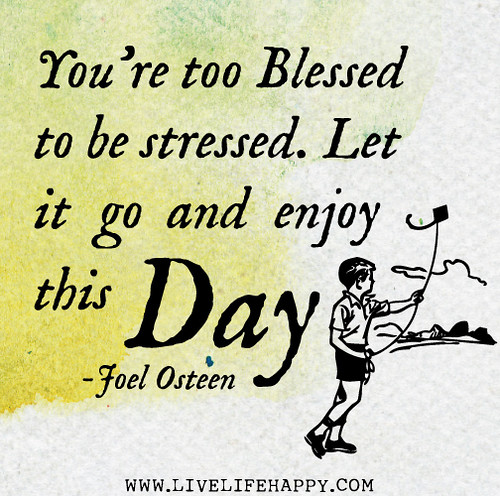 You're too blessed to be stressed. Let it go and enjoy this day! - Joel Osteen
