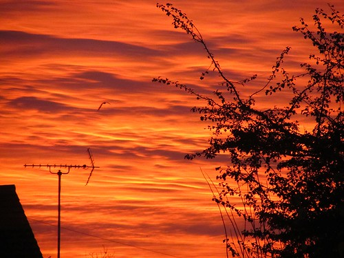 Sunrise over Rayleigh, Essex, 12 Nov 12 by Deptford Draylons