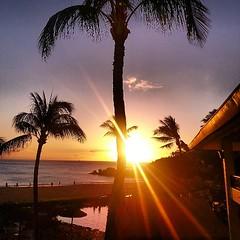 Eye of the tiger. #sunset #maui #blackrock #kaanapali #shoots #coreymountphotography #photooftheday #instalove #igers @hawaiistagram #insatdaily #love #beautuful #beach #water #cheehoo #insamood #happy #blessed #hashtag #nofilter