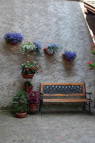 Flowers in Pelizzano
