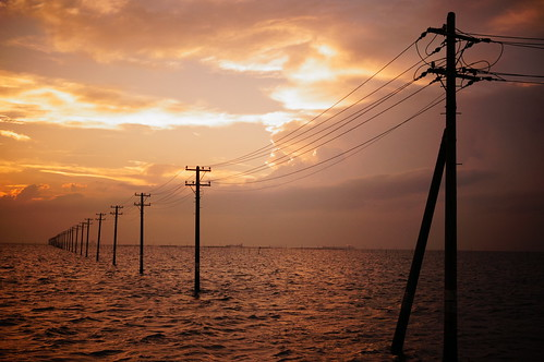 Toy Camera warm utility poles into the sea 05