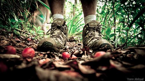Hiking shoes île de la Réunion
