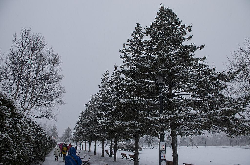 雪の都.北海道~洞爺湖&世界三大夜景.涵館!!!