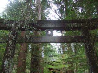 滝尾神社・運試しの鳥居
