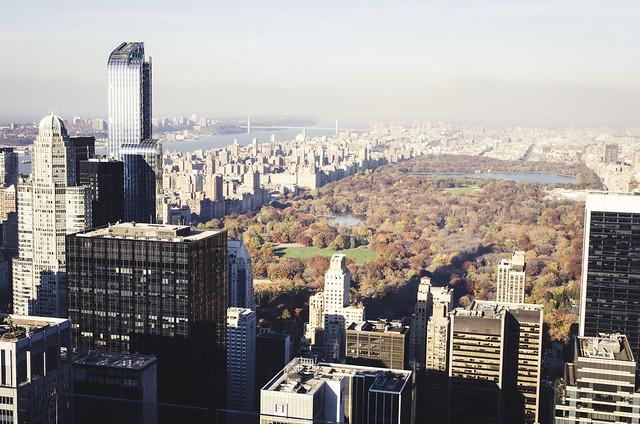 El pulmón de Newyork