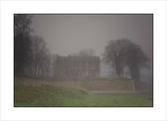 A travers la brume