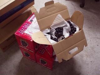 (昨天才採收的新鮮葡萄,志工就馬上寄了4盒給協會的工作人員)