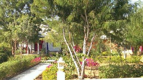 Cottages of Achrol bagh
