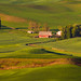 Palouse Farm House by CraigGoodwin2