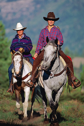 Horseback Riding; Outdoor Recreation in British Columbia, Canada