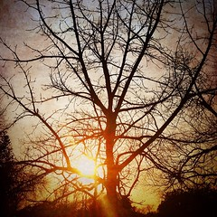 19 February 2014 #sunset #samespotforayear #satx