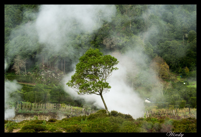 Ruta viaje Isla Sao Miguel - Cocido de las caldeiras de Furnas