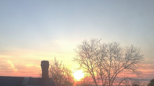 roof our chimney sky tree home colors leaves sunrise spring branches perspective atmosphere daily limbs silhoutte challenge comforts odc odt