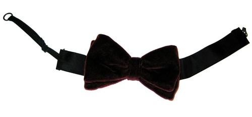 Bow Tie courtesy of PJ McNally/Wikimedia Commons