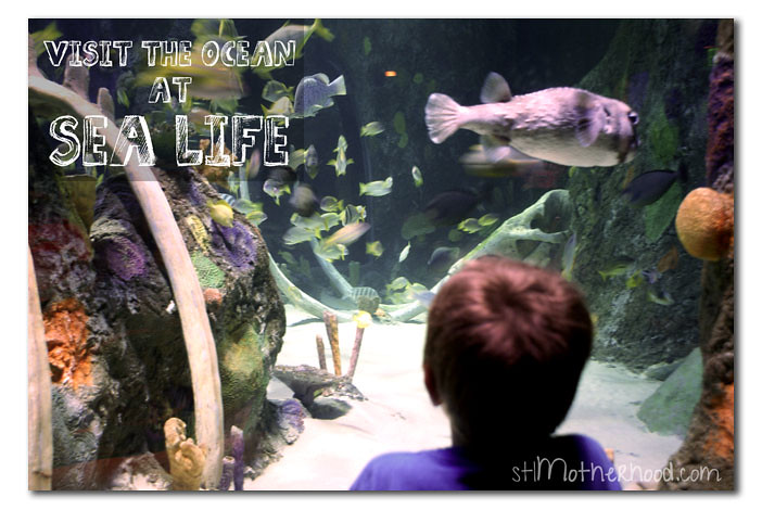 sea life kansas city