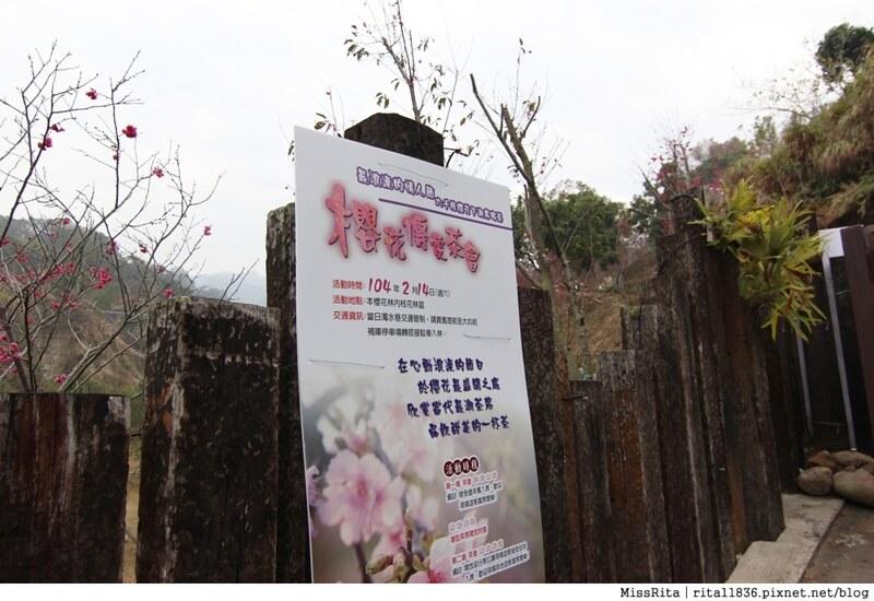2015台中賞櫻 大坑 濁水巷櫻花林6